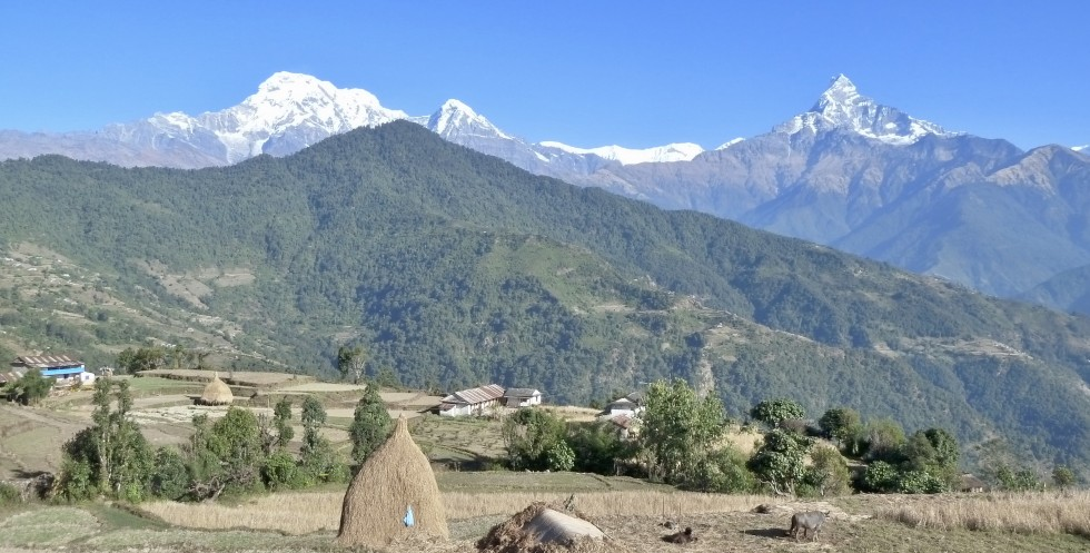 Poon Hill Trek: A Paradise for Nature Lovers