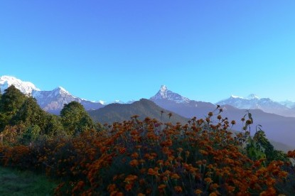 Glimpses of Annapurna mountains from Pothana.