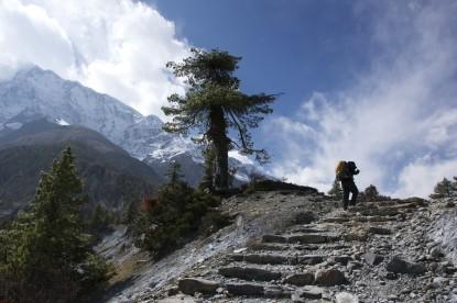 Annapurna circuit trekking trails.