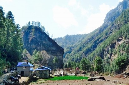 The Sherpa houses and their garden in Khumbu.