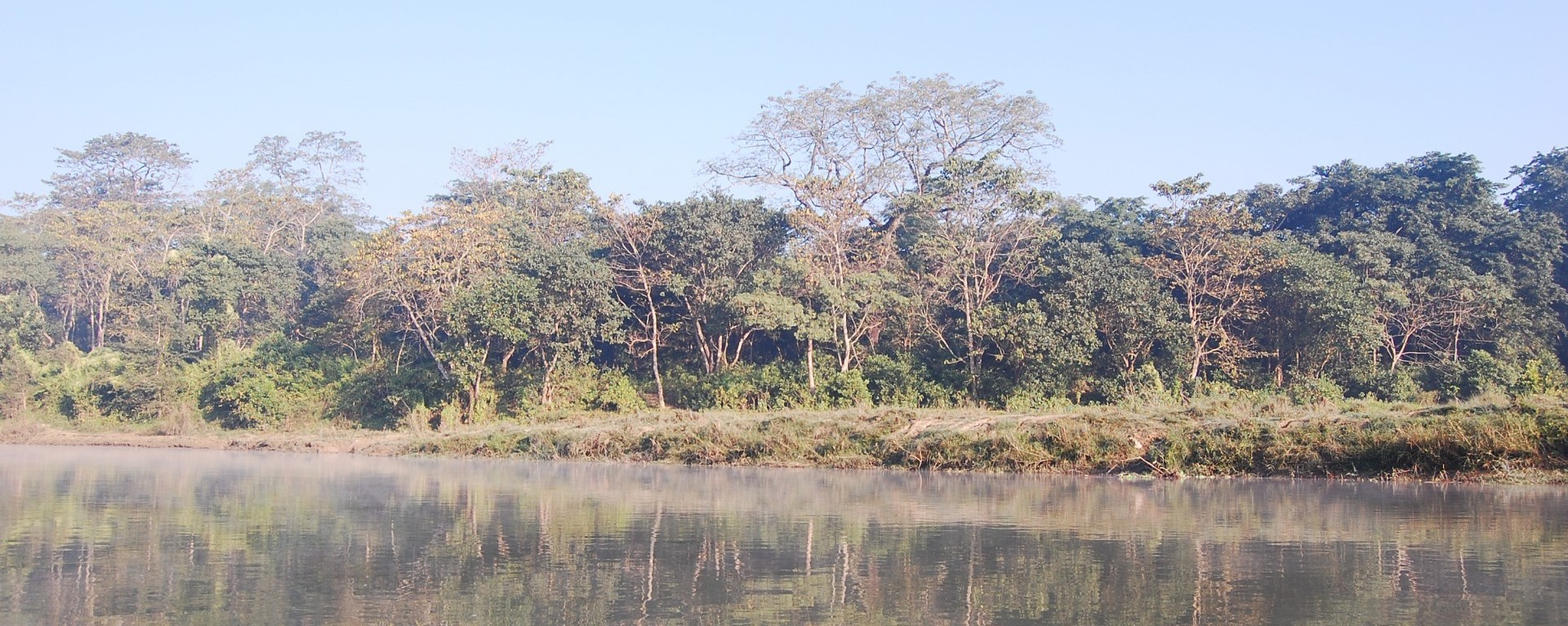 The National park forest beside the rapti river.
