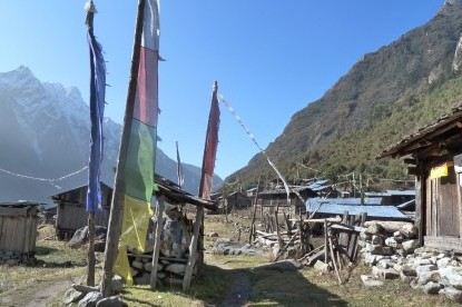 The tibetan settlement of Phole village