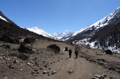 Nice walking trail towards Kyangjin Gompa village.