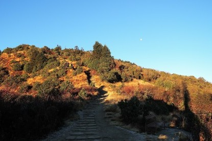 The trail which is leading to Poonhill