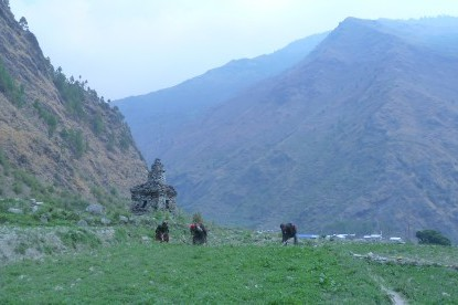 Farmers working on field at Gatlang, Tamang Heritage Trail Trek.